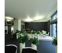 Натяжной потолок 36 м² - Олимп-Зеленоград