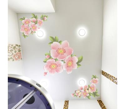 Матовый натяжной потолок с фотопечатью 1 м² + монтаж - Олимп-Зеленоград